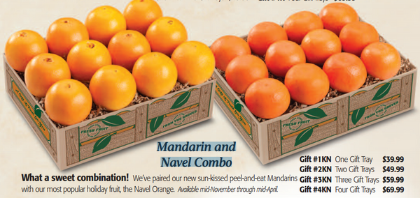 Mandarin and Navel Combo - Florida Orange World