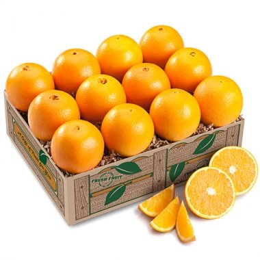 Florida Navel Oranges    - - Orange World