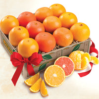 Orange Quartet- Navel Oranges, scarlet Navels, Tangerines and Mandarin Oranges - Florida Orange World