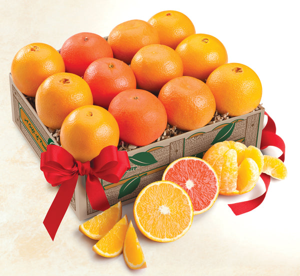 Orange Quartet- Navel Oranges, scarlet Navels, Tangerines and Mandarin Oranges - Orange World