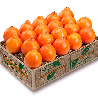 Petite Sweet Honeybells - Florida Orange World