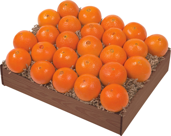 Petite Sweet ( Several Varieties available ) - Orange World