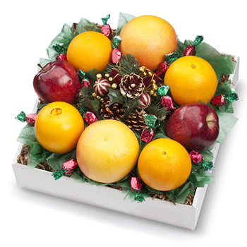 SEASON'S GREETINGS WREATH - Orange World