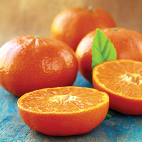 Sol Zest (TM) Mandarins with Red Grapefruit - Florida Orange World