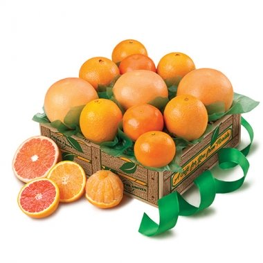 Sun-Kissed Sampler - Florida Orange World