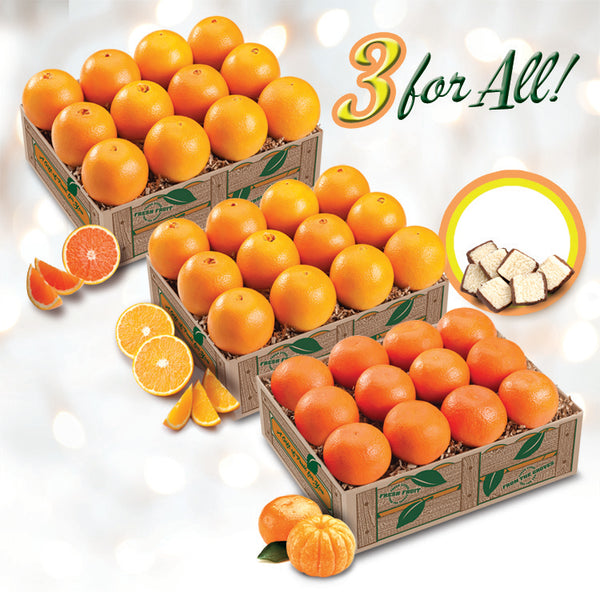 3 For All - Red Scarlet Navels, Golden Navels, Mandarin Oranges - Florida Orange World