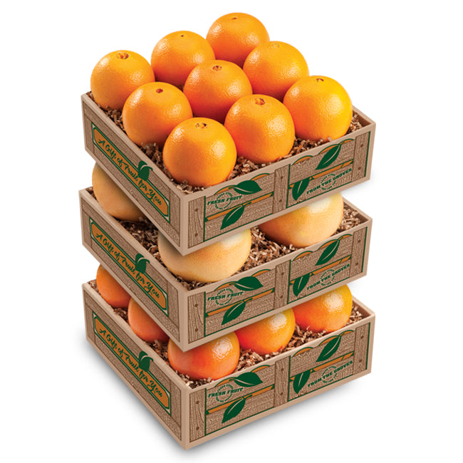Florida Oranges Taster Tower - Florida Orange World