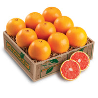 Variety Taster ( Several Options to choose from) - Florida Orange World