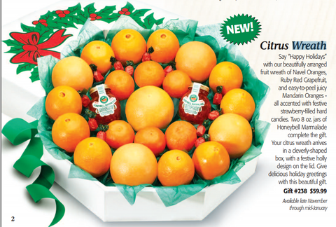 Citrus Wreath- Florida Navel Oranges & Ruby Red Grapefruit - Florida Orange World