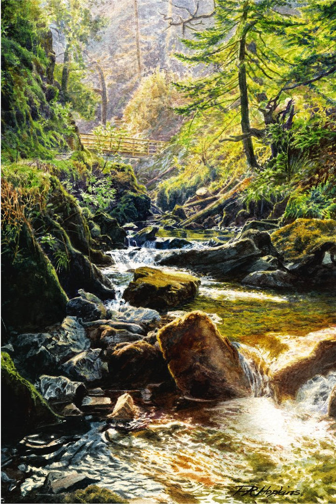 Bubbling Beck, Stanley Ghyll
