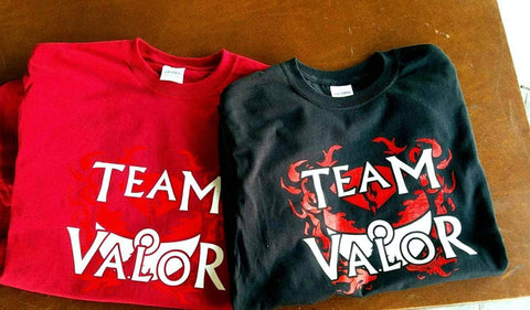 Valor Team T-Shirt - hand printed fan tee - Aardvark Tees - Tees that Please