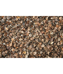 Buckwheat Hulls for meditation cushion refill - 1kg