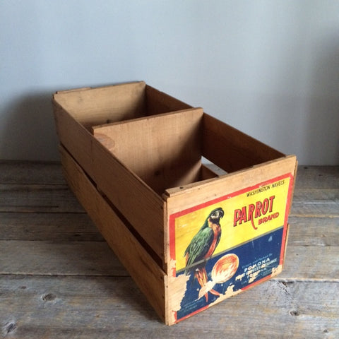 Antique Parrot Brand Box