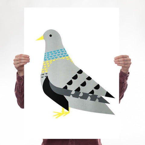 Supersize Pigeon (Turquoise / Yellow)