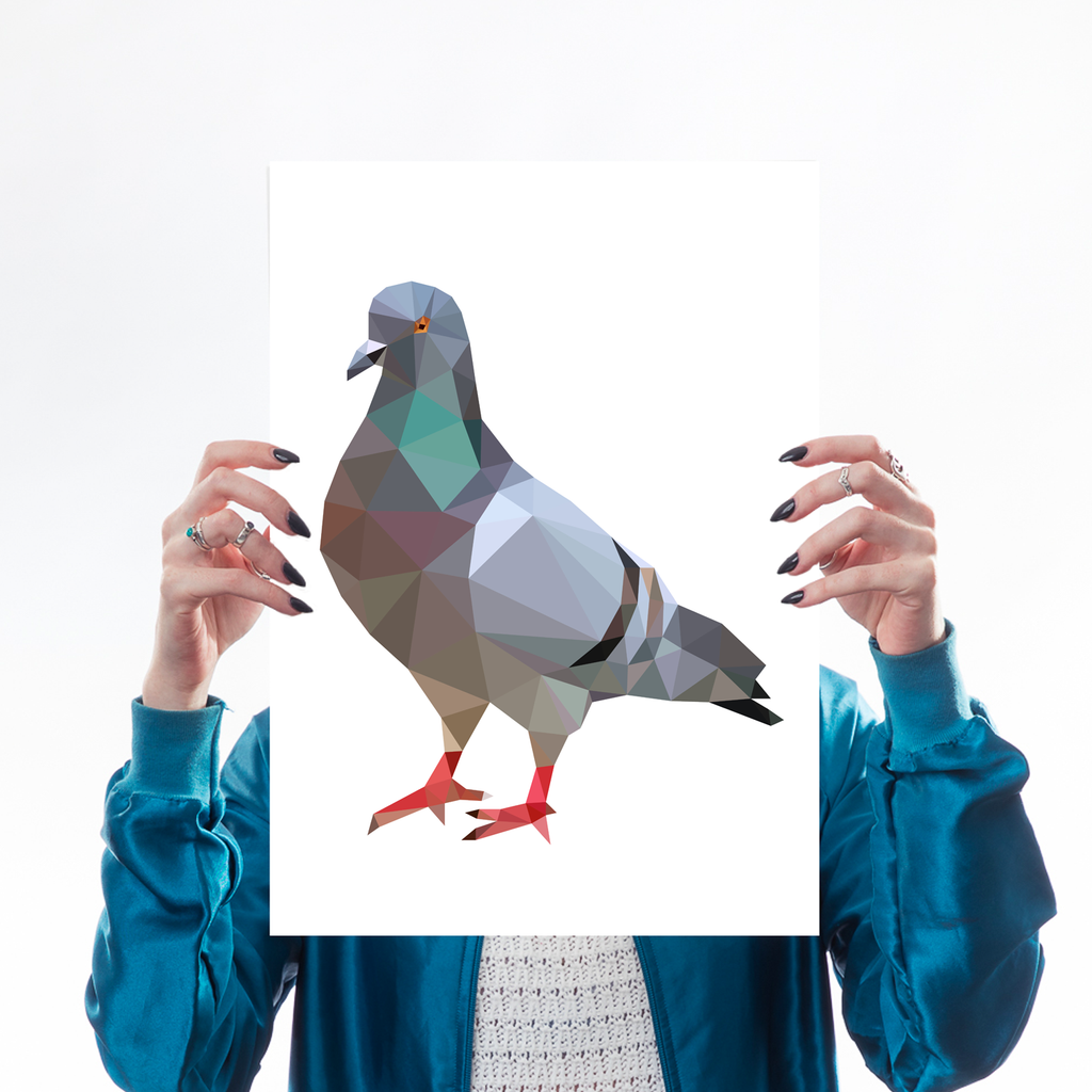 Geometric Pigeon Art Wildlife Michail Kaus for We Built This City 1