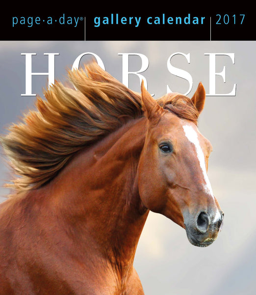 Horse Page-A-Day Gallery Calendar 2017