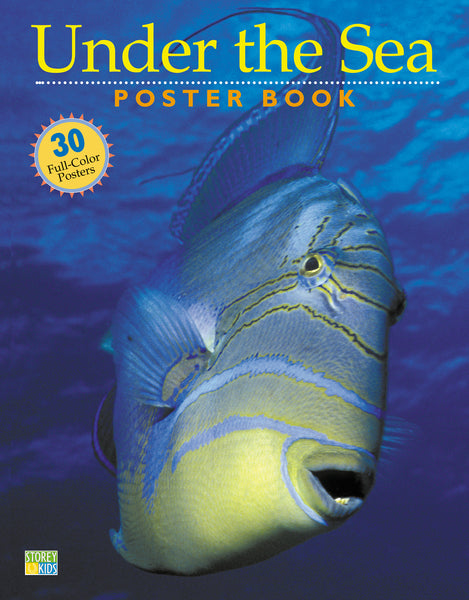 Under the Sea Poster Book