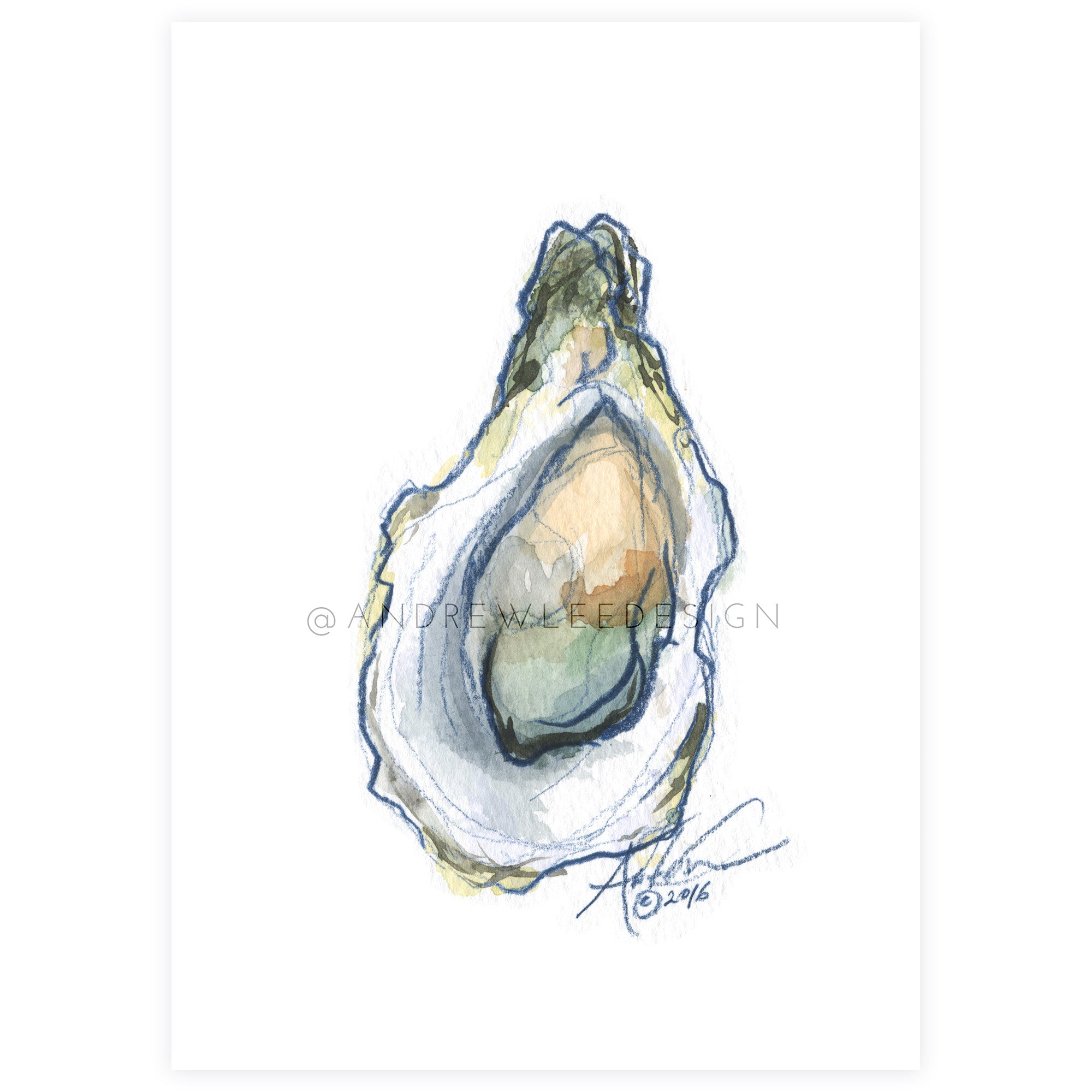 Oyster 3 of 6, Indigo & Watercolor