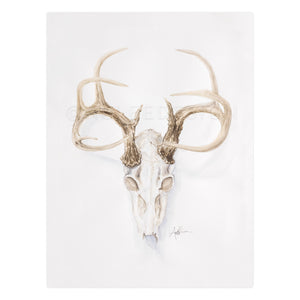 Collerine Euro Mount Deer Skull
