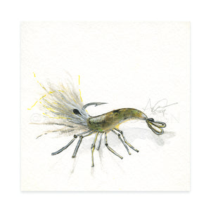 "Shrimp Fly Pattern 02, 6x6"" Original"