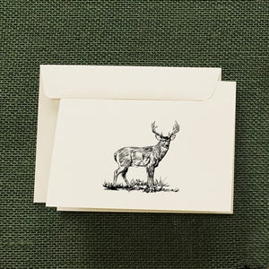 Whitetail Buck Stationery Set