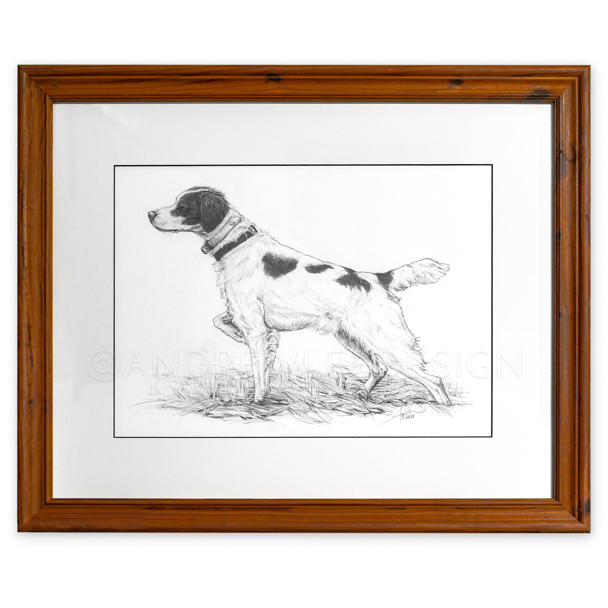 Brittany Spaniel in Pencil, Original