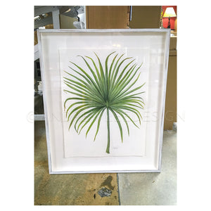 Saw Palmetto 1 of 2, 22x30""