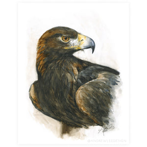 Regal Golden Eagle, Print