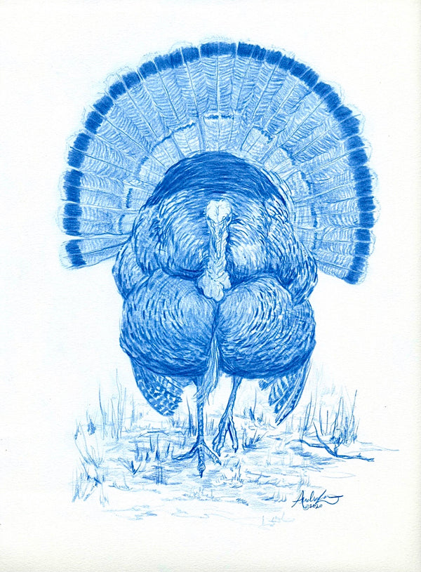 Gobbler in Blue, 9x12""