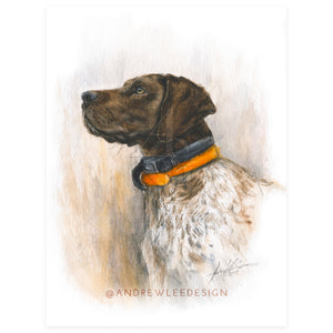 What's on the Horizon, German Shorthair Pointer