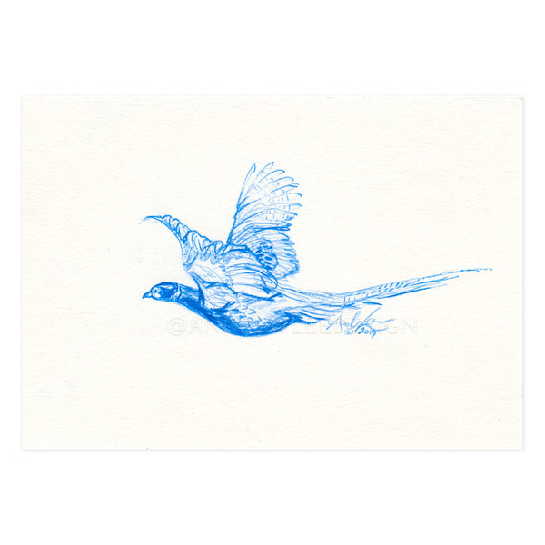 Pheasant Flight in Blue, 4x6""