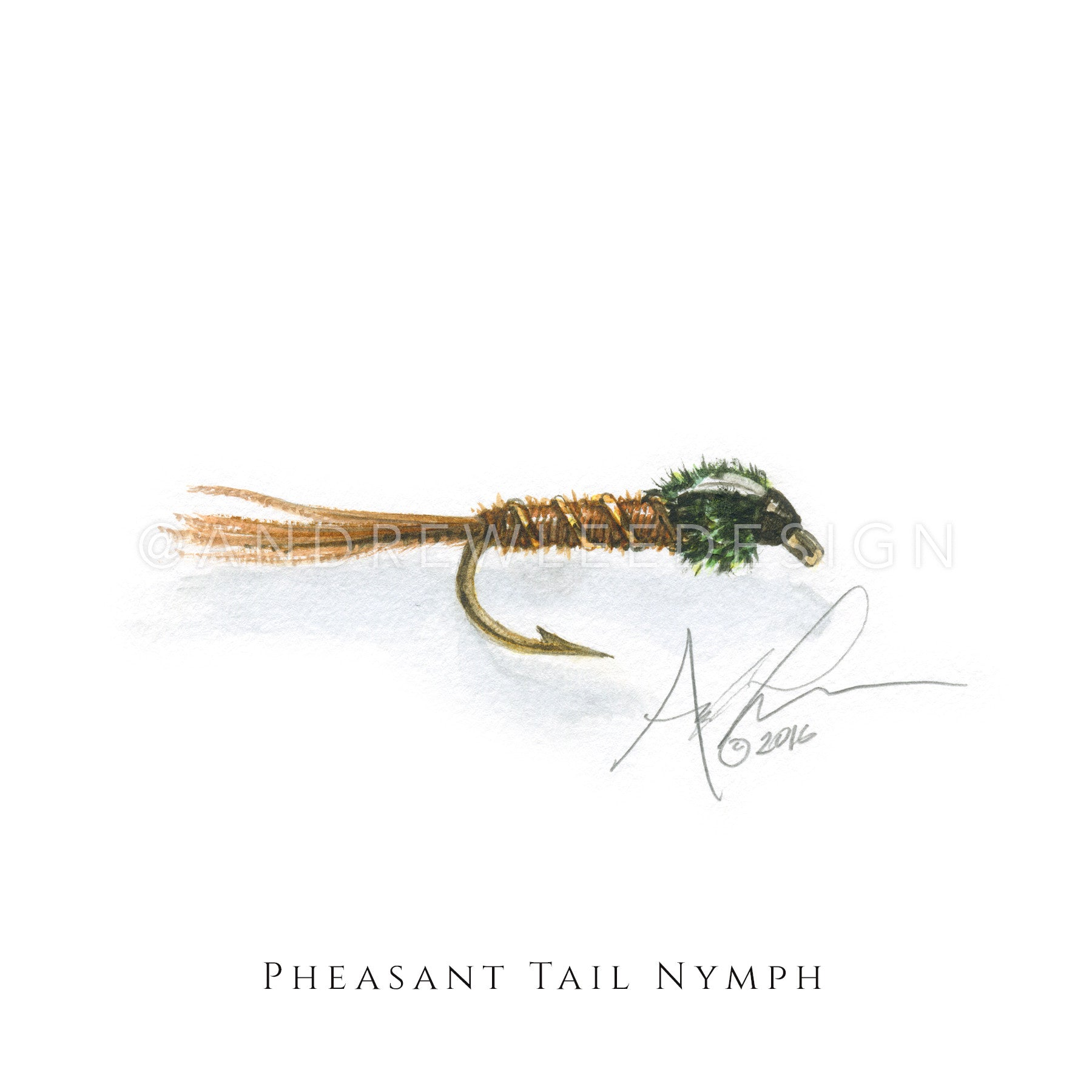 Fly - Pheasant Tail Nymph Pattern