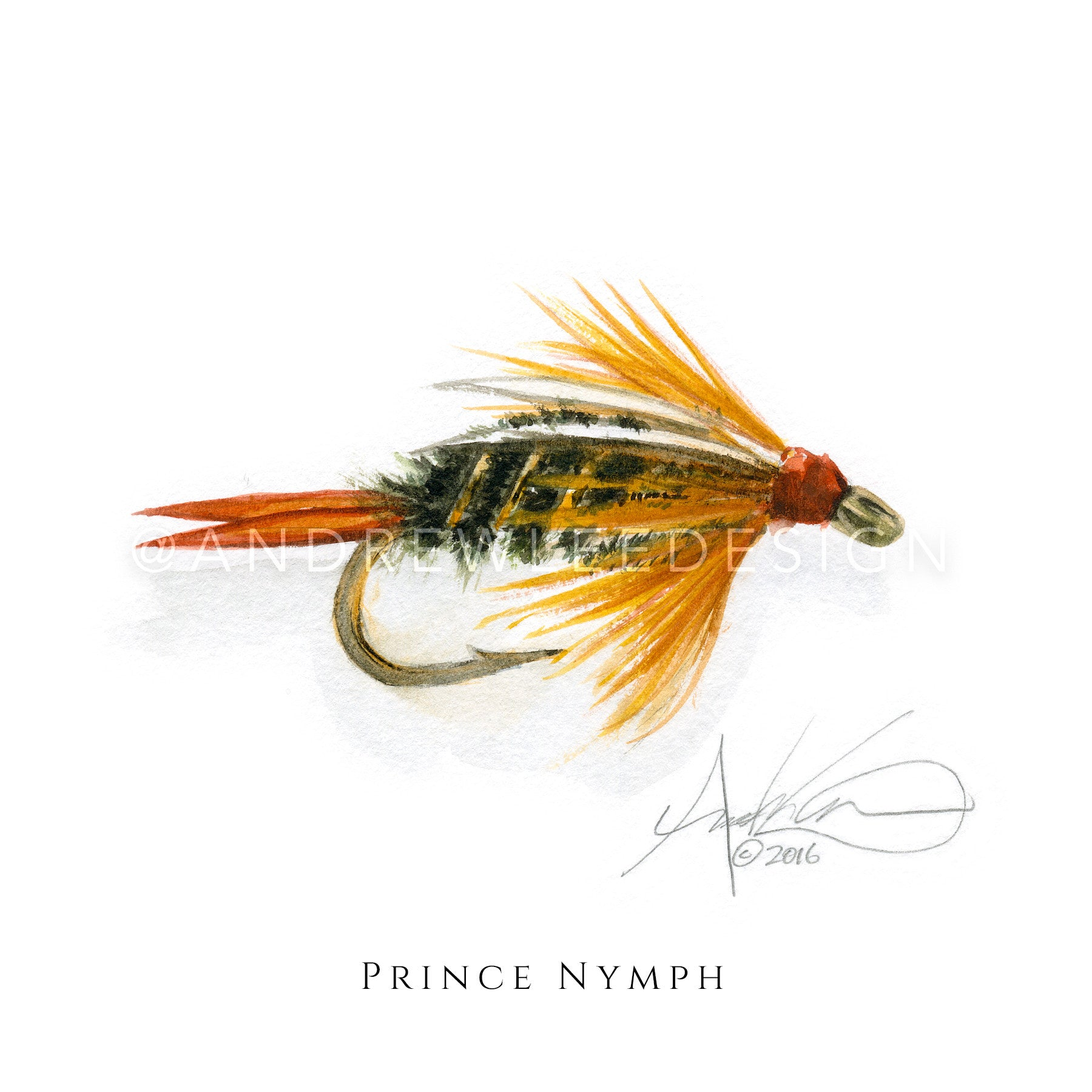 Fly - Prince Nymph Pattern