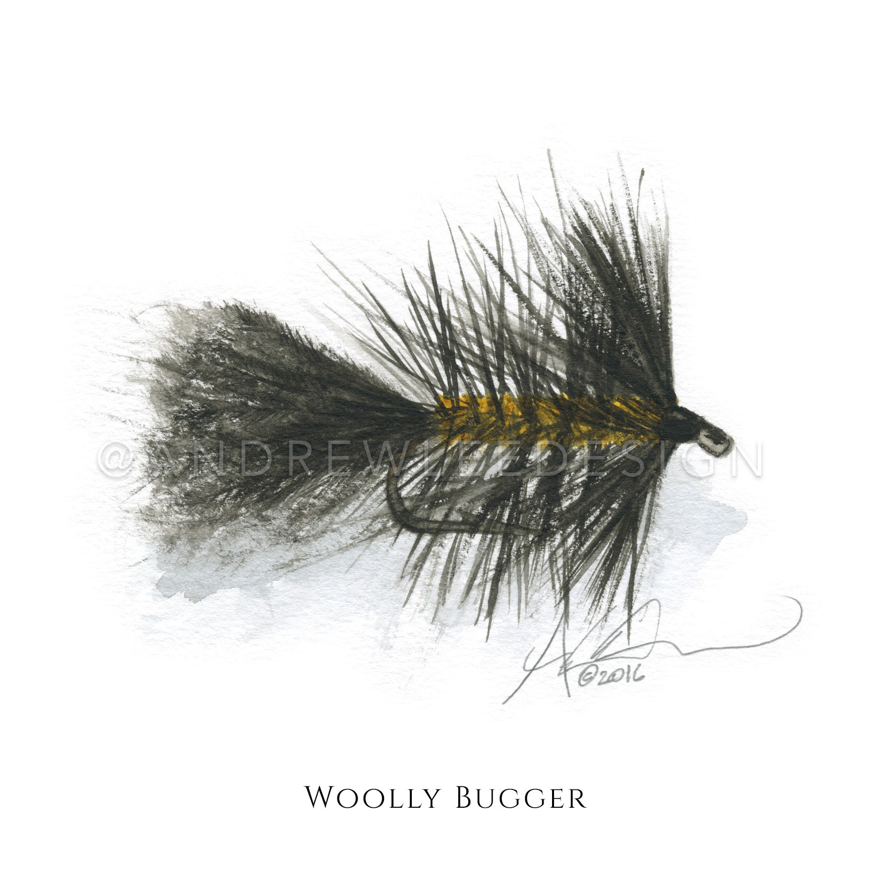 Fly - Black Woolly Bugger Pattern