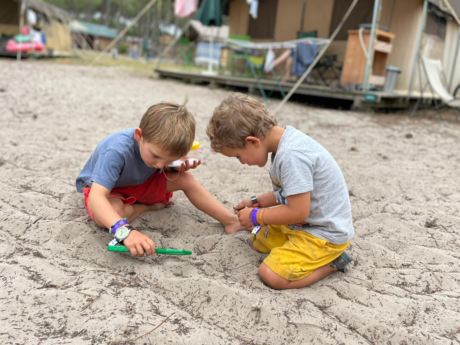 Two kids searching for bugs and crabs on the beach on holiday