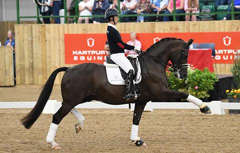 'Every inch a superstar': Valegro wows fans with special appearance