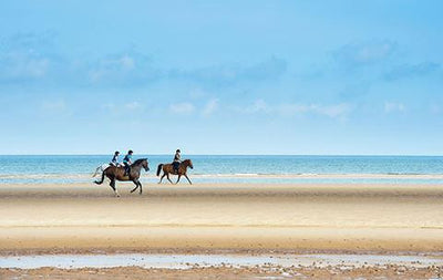 Here's why riding on the beach is more than just a fun day out