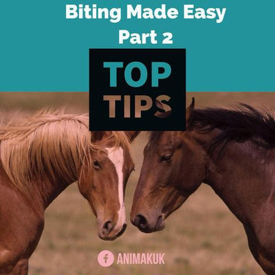 Top Tips: Biting made easy (part 2)