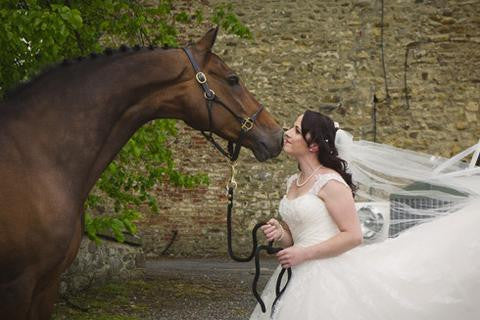 Why horses make great wedding guests: pics