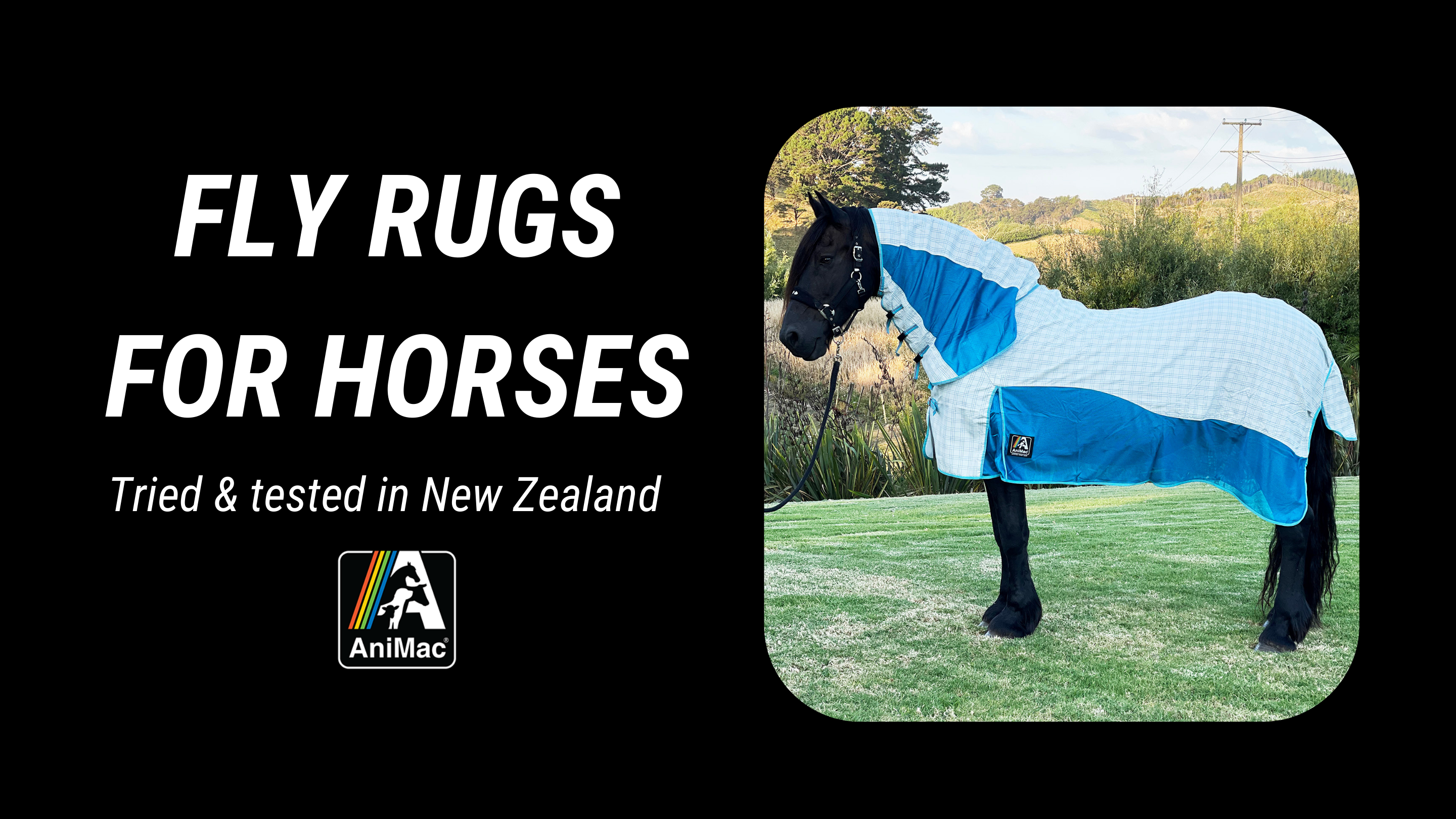 Horse Fly Rugs by AniMac