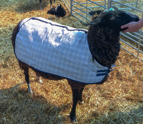 AniMac Sheep Coat