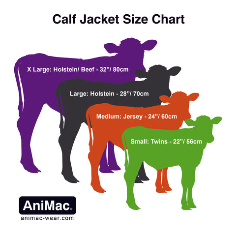 calf jacket supplier