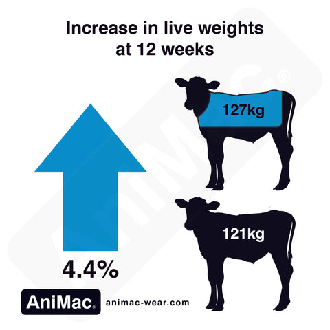 Calf Jackets Growth Rates Comparison