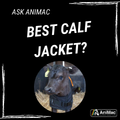 Ask AniMac What is the best calf jacket or calf blanket for sale?