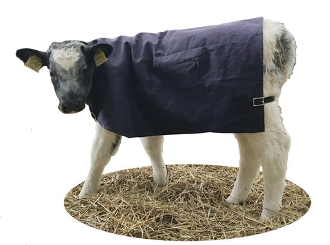 Calf Jacket Calf Blanket Calf Coat