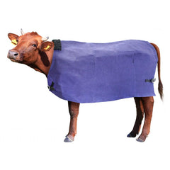cow cover cow coat