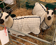 Sheep Show Coats