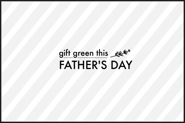 Respect Mother Nature on Father's Day: Eco-friendly gifting ideas