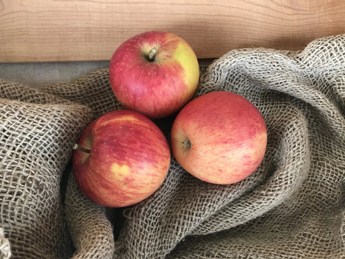 Apples - Rubinette