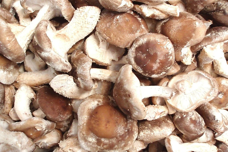 Mushrooms - Shiitake